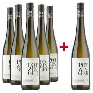 5+1 Sauvignon Blanc Tradition Paket - Weingut Stefan Potzinger