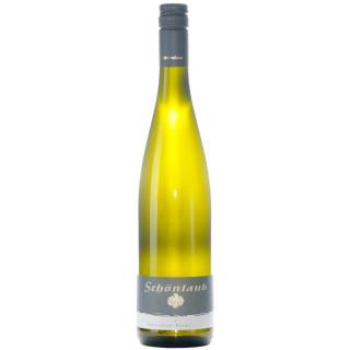 2019 Sauvignon Blanc trocken - Weingut Schönlaub
