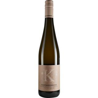 2019 Grauburgunder Kalkstein trocken BIO - Weingut Kastanienberg