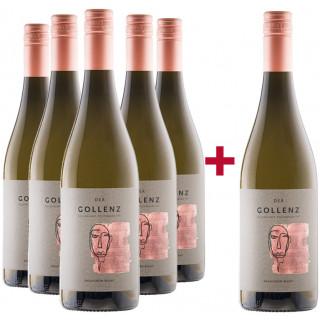 5+1 Sauvignon Blanc Vulkanland Steiermark DAC Paket - Weingut Gollenz