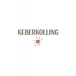2019 Sommer Chiller Rosé trocken - Weingut Keber Kolling