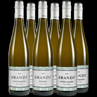 Brandt Entdeckerpaket