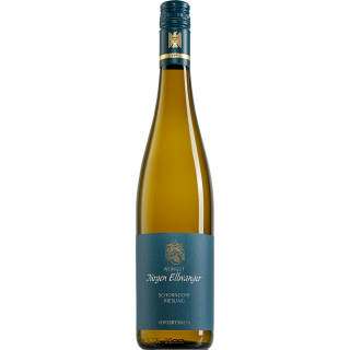2018 Schorndorfer Riesling Ortswein - Weingut Ellwanger