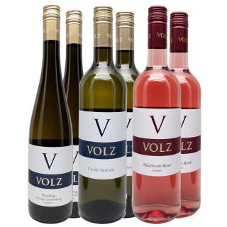 Probierpaket Volz & Sohn  - Weingut Volz & Sohn