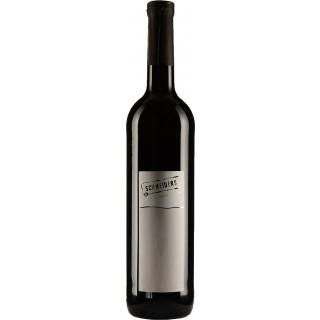 2018 Merlot Rotwein im Eichenfass gereift QbA trocken - Weingut Weinmanufaktur Schneiders