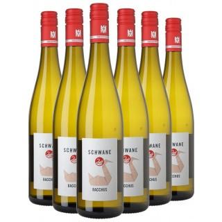 5 Freunde Bacchus VDP.Gutswein Paket - Weingut zur Schwane