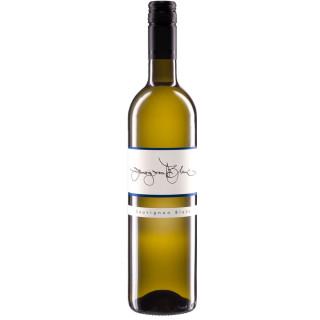2019 Sauvignon Blanc QbA - Weingut Scherr
