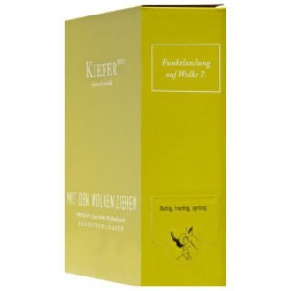 2017 Bag in Box Mit den Wolken ziehen trocken 3,0 L Weinschlauch - Weingut Friedrich Kiefer