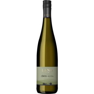 2020 Anton ... der Filou lieblich - Weingut Lang