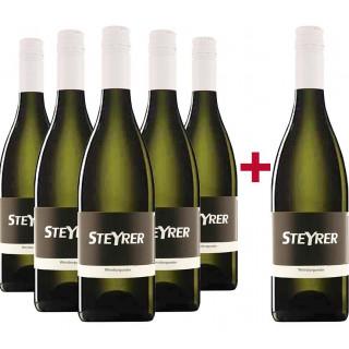 5+1 Weißburgunder Paket - Weingut Steyrer