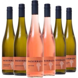 Der frische Frühlingsgenuss Probierpaket - Weingut Dackermann