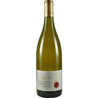 2015 Großlangheimer Kiliansberg Sauvignon Blanc BRODACKER trocken - Weingut Patrizierhof