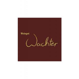 2018 Riesling Rheinischer Landwein trocken - Weingut Wachter