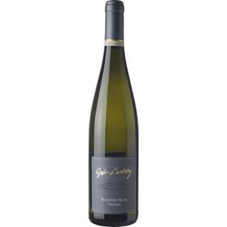 2019 Sauvignon Blanc Trocken - Weingut Gebrüder Ludwig