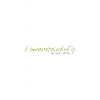 2018 Winninger Domgarten Cuvée Weiß trocken 1,0 L - Weingut Löwensteinhof