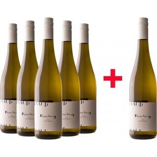 5+1 Riesling Gutswein trocken BIO Paket - Weingut Knauß