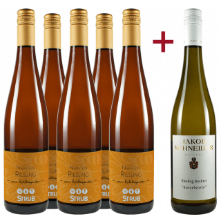 Jungwinzer Riesling Paket - Weingut Strub / Jakob Schneider