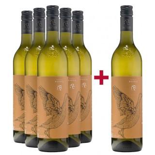 5+1 Paket Souvignier Gris - Weingut Regele