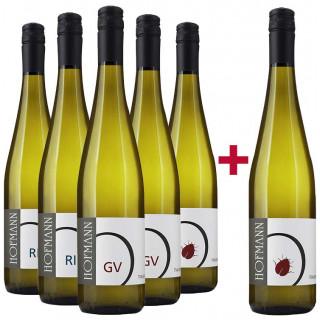 5+1 Riesling und Grüner Veltliner Entdeckerpaket - Weingut Rudolf Hofmann