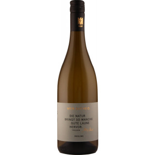 2019 PUR Riesling trocken - Weingut Heid