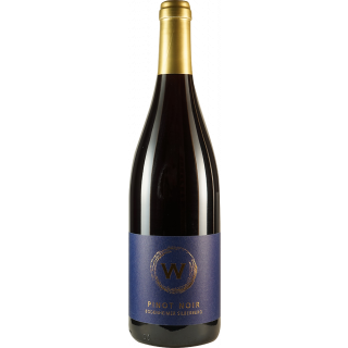 2017 Pinot Noir Barrique trocken - Weinmanufaktur Weyer