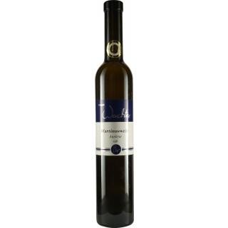 2018 Riesling Martinuswein Auslese süß 0,5L - Weingut Wachter