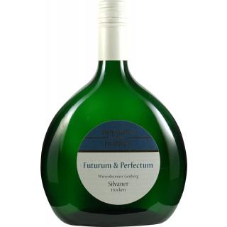 2018 Wiesenbronner Geisberg Silvaner Spätlese Trocken - Weinbau Hofmann