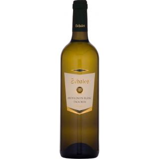 2018 SCHALES Sauvignon Blanc trocken - Weingut Schales