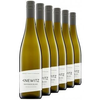 Rheinblick Sauvignon Blanc-Paket - Weingut Knewitz