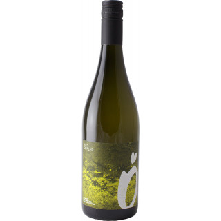 2019 THÖRLBERG Rotgipfler trocken - Weingut Österreicher