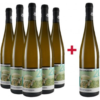 5+1 Enkircher Steffensberg Riesling-Paket - Weingut C.A. Immich-Batterieberg