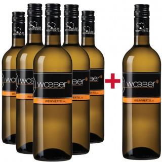 5+1 Paket Grüner Veltliner Ried Nussberg Weinviertel DAC - Weingut Wöber
