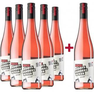 5+1 Paket Rock Rotling feinfruchtig halbtrocken - Weingut Martin Göbel