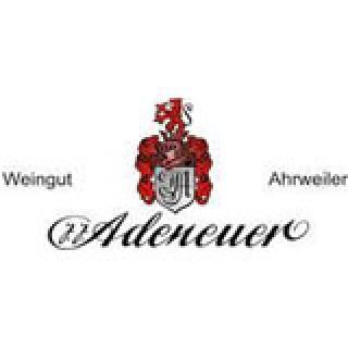 2018 Neuenahrer SONNENBERG Frühburgunder VDP.Großes Gewächs trocken - Weingut Adeneuer