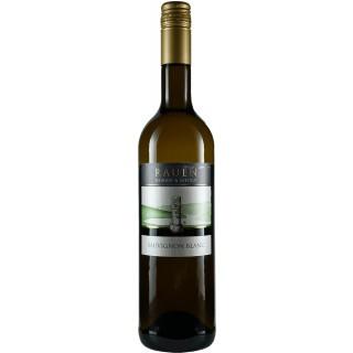 2020 Sauvignon Blanc trocken - Weingut & Sektgut Rauen