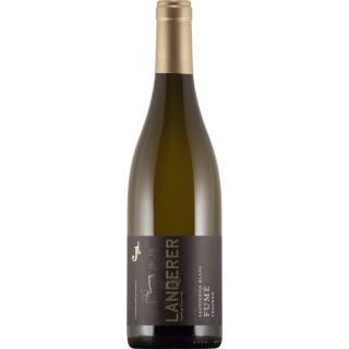 2019 Sauvignon Blanc -FUMÉ- trocken - Weingut Landerer