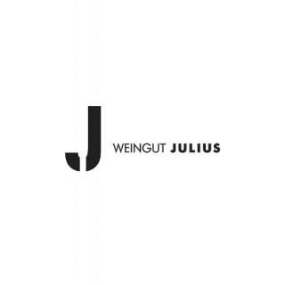 2018 Silvaner trocken BIO - Weingut Julius