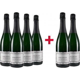 4+2 Paket Pinot Noir Rosé Sekt brut - Weingut Brandt