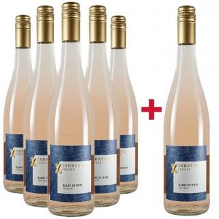 5+1 Blanc de Noir Paket - Weingut Zehnthof Kruger