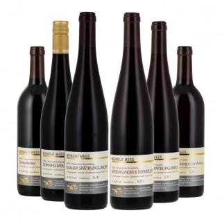 Probierpaket Rotwein - Weingut Mees