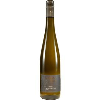 2018 Goldberg Sauvignon Blanc BIO - Weingut Bernhard-Räder