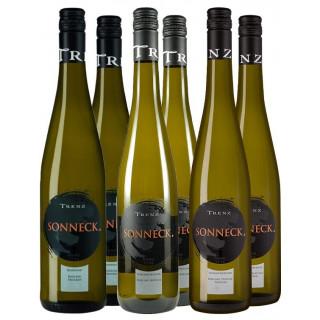 Riesling-Probierpaket - Weingut Sonneck