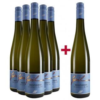 5+1 Sauvignon Blanc Paket - Weingut Helmut Geil