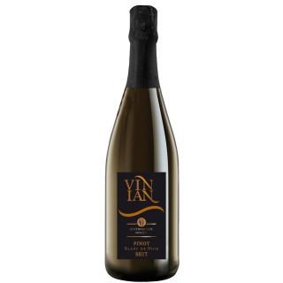 2017 Vinian Pinot Blanc de Noir brut - Bottwartaler Winzer