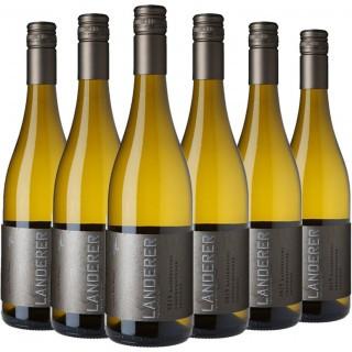 Kaiserstuhl Grauburgunder Paket - Weingut Landerer