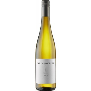 2019 Riesling ** trocken - Weinfactum