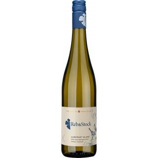 2020 Reb&Stock Cabernet blanc feinherb Bio - Weingut Hoflößnitz