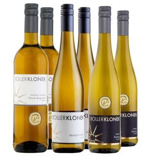 Weißweinpaket trocken - Weingut Boller Klonek