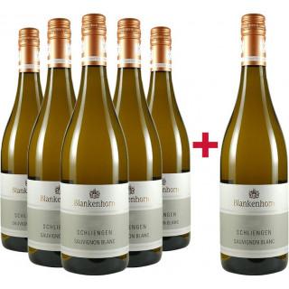 Sauvignon Blanc VDP.ORTSWEIN Paket - Weingut Blankenhorn