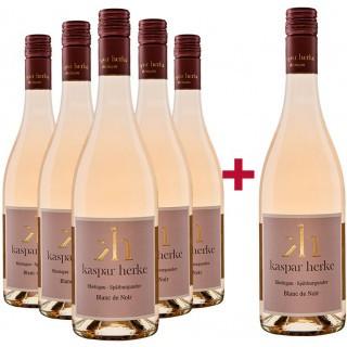 5+1 Paket 2020 Blanc de Noir trocken  - Weingut Kaspar Herke